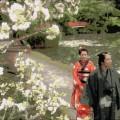 連続テレビ小説「あさが来た」7話感想