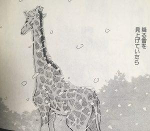 hacihkuro2-012