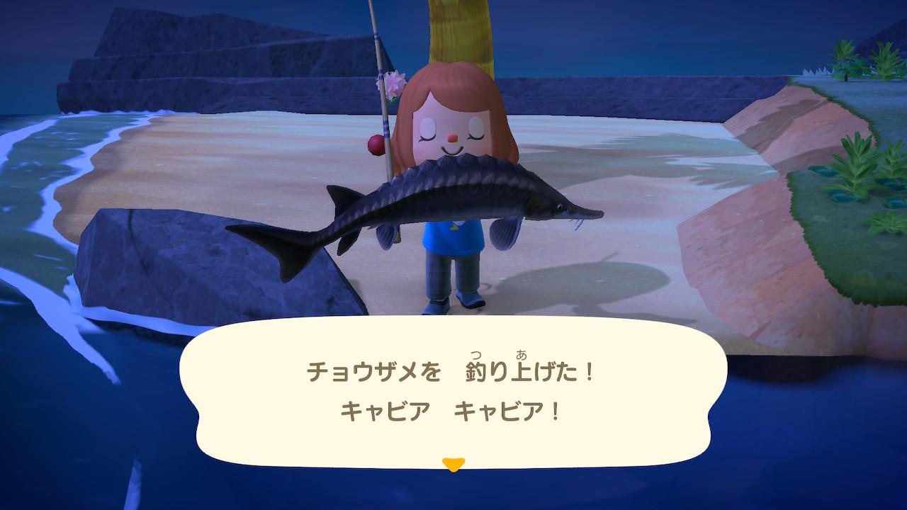 あつ森のチョウザメ